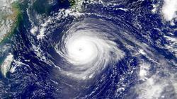 """飓风""""弗洛伦萨""""瞄准美国聚酯纤维生产的核心地区"""