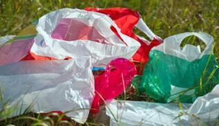 前三季度深圳查处不合格塑料袋超300万个