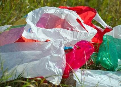 澳门立法限制塑料袋使用 零售场所不再免费提供