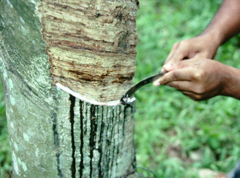 天然橡胶交割质量管理培训提升品牌综合竞争力